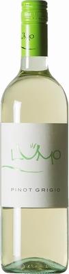 Colterenzio Lumo Pinot Grigio Venezie IGT 2019 0,75 ltr.