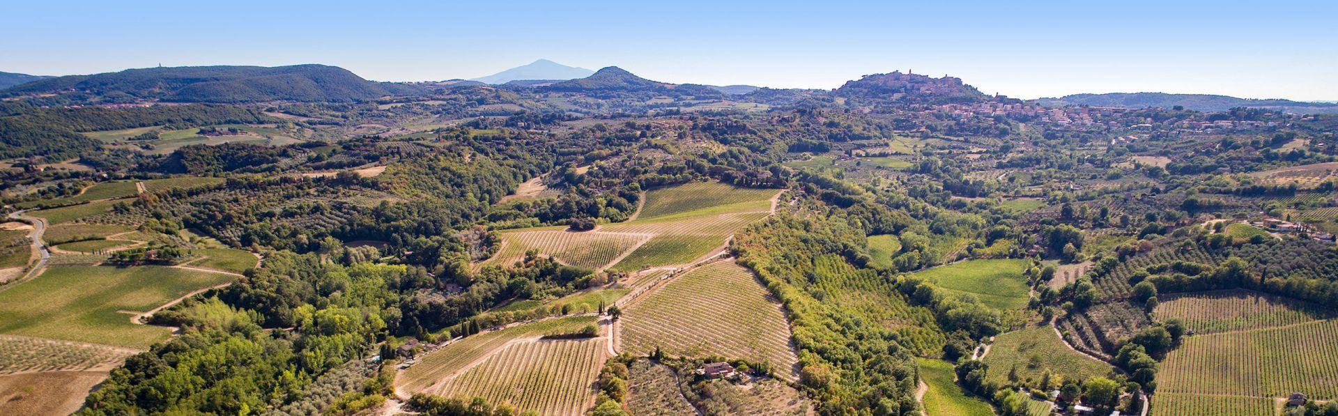 Valdipiatta - Montalcino