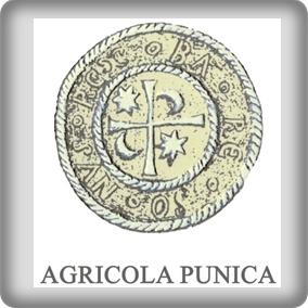 Agri Punica