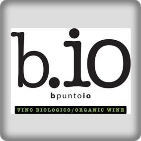 B.io (bpuntoio)